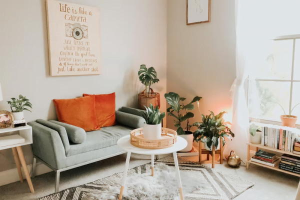 Budget-Friendly Organization & Storage Ideas for Your Living Room