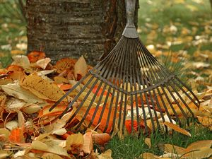 Fall Maintenance Tasks that Should Be On Your Weekend To-Do