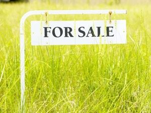 Buying Vacant Land and Lots in Collingwood