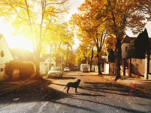 5 Qualities to Look for in the Ideal Neighbourhood