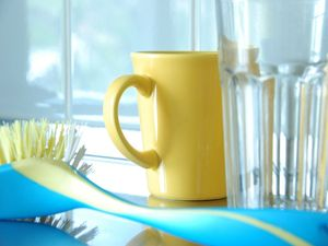 Germiest Places to Clean in Your Home